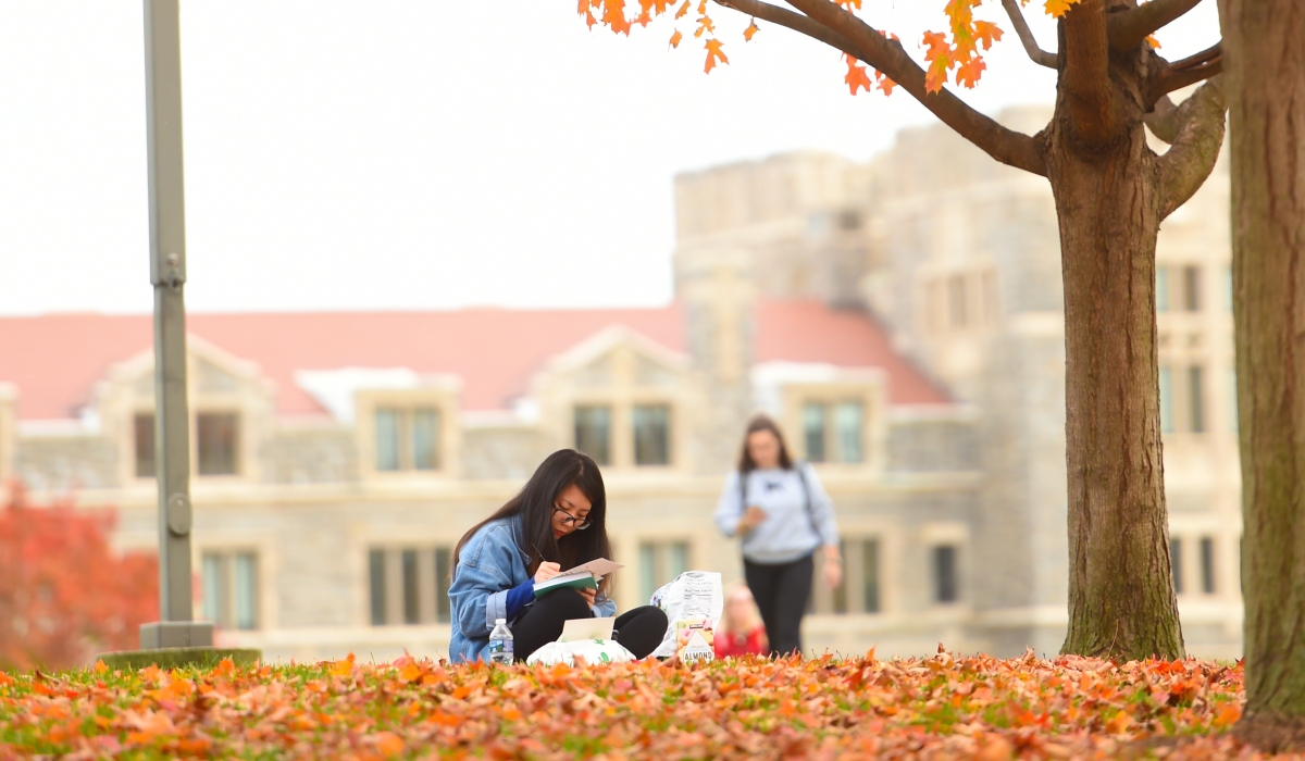 Student sitting among leaves